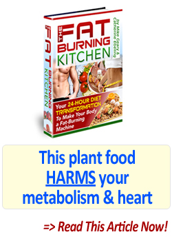 Read this fat burning kitchen review article now